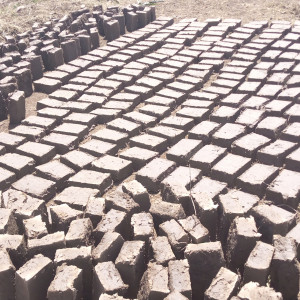 youths brick laying site